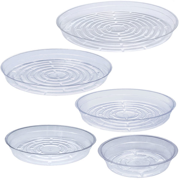 Clear Saucers