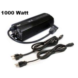ACE 1000 Watt Ballast