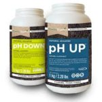 ph up down