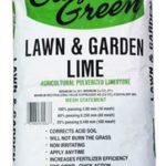 garden green garden lime
